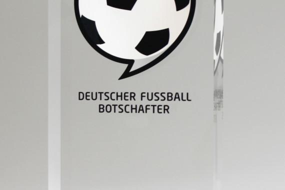 ©Deutscher Fußball Botschafter_Award.jpg
